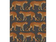 Cole & Son WP: Ardmore Leopard Walk 109/2008.CS.0 Charcoal & Orange