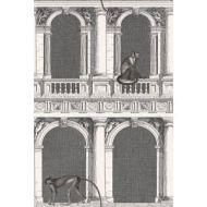Cole & Son WP: Fornasetti Procuratie e Scimmie 114/21041.CS.0 Black/White