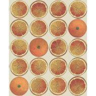 Cole & Son WP: Fornasetti Arance 114/24047.CS.0 Orange/Cream