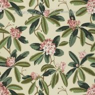 Scalamandre: Rhododendron Outdoor Print SC 0001 16454 Reds & Greens On Cream