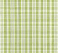 Scalamandre: Preston Cotton Plaid SC 0003 27122 Pear