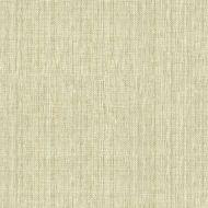 Candice Olson for Kravet: Sequoia 34174.161.0 Sand