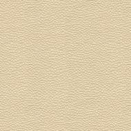 Candice Olson for Kravet: Whampoa 31965.1.0 Shell