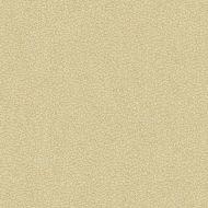 Candice Olson for Kravet: Jatoba 34177.16.0 Oyster