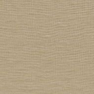 Kravet Smart: Windswept Linen 9725.1616.0 Flax