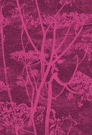 Cole & Son for Lee Jofa: Cow Parsley F111/5017.CS.0 Magenta Plum