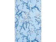 Lilly Pulitzer II for Lee Jofa: Corally WP P2016102.550.0 Sky/Worth