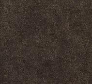 Boris Kroll for Scalamandre: Aurora Velvet SC 0005 K65110 Sable