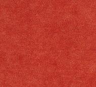Boris Kroll for Scalamandre: Aurora Velvet SC 0013 K65110 Persimmon