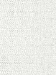 Hinson for Scalamandre: Lee WP WHN 000E P0665 Black on White
