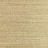 Scalamandre: Metal Sisal SC 0001 WP88338 White Gold