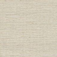 Winfield Thybony for Kravet: Metallic Sisal WSS4503.WT.0 Parchment