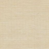 Winfield Thybony for Kravet: Sisal WSS4504.WT.0 Cream