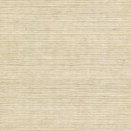 Winfield Thybony for Kravet: Metallic Sisal WSS4506.WT.0 Sand