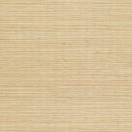 Winfield Thybony for Kravet: Sisal WSS4507.WT.0 Barley