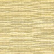 Winfield Thybony for Kravet: Metallic Sisal WSS4520.WT.0 Glistening Ore