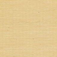Winfield Thybony for Kravet: Sisal WSS4521.WT.0 Camomile