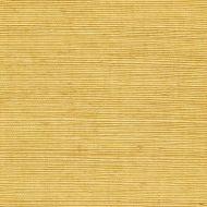 Winfield Thybony for Kravet: Sisal WSS4522.WT.0 Saffron