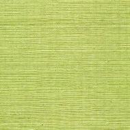 Winfield Thybony for Kravet: Sisal WSS4529.WT.0 Margarita
