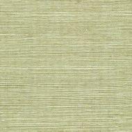 Winfield Thybony for Kravet: Sisal WSS4531.WT.0 Fern