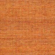 Winfield Thybony for Kravet: Metallic Sisal WSS4534.WT.0 Ginger