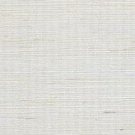 Winfield Thybony for Kravet: Metallic Sisal WSS4567.WT.0 Sand Dollar