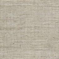 Winfield Thybony for Kravet: Metallic Sisal WSS4571.WT.0 Linen