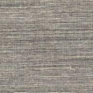 Winfield Thybony for Kravet: Metallic Sisal WSS4576.WT.0 Shadow