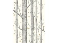 Cole & Son WP: Whimsical Woods & Stars 103/11050.CS.0 Black & White