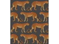Cole & Son WP: Ardmore Leopard Walk 109/2008.CS.0 Charcoal & Orange