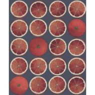 Cole & Son WP: Fornasetti Arance 114/24046.CS.0 Blood Orange/Ink