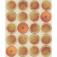 Cole & Son WP: Fornasetti Arance 114/24047.CS.0 Orange/Cream