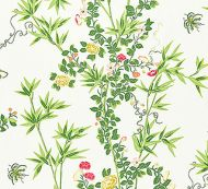 Scalamandre: Jardin de Chine 16608-001 Spring