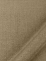 Beacon Hill: Tussah Silk 230603 Bamboo