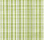 Scalamandre: Preston Cotton Plaid 27122-003 Pear