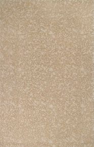 Company C Crackle Rug in Driftwood