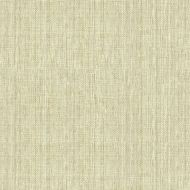 Candice Olson for Kravet: Sequoia 34174.161.0 Sand