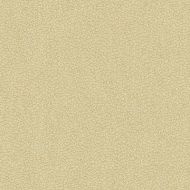 Candice Olson for Kravet: Jatoba 34177.16.0 Oyster