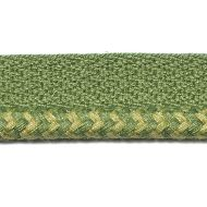 Duralee: Pavilion Indoor/Outdoor Trim 7318-597 Grass