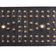 Schumacher: Studded Leather Trim 76092 Black