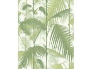 Cole & Son WP: Contemporary Restyled Palm Jungle 95/1001.CS.0 Olive, Green & White