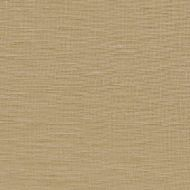 Kravet Smart: Windswept Linen 9725.116.0 Sand
