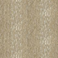 Jeffrey Alan Marks for Kravet: Chromis CHROMIS.106.0 Pumice