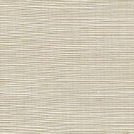 Winfield Thybony for Kravet: Sisal WSS4502.WT.0 Whisper