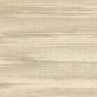 Winfield Thybony for Kravet: Sisal WSS4504.WT.0 Cream