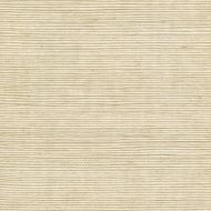 Winfield Thybony for Kravet: Metallic Sisal WSS4506.WT.0 Sand
