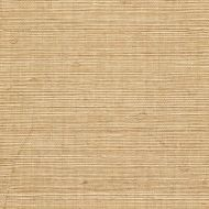 Winfield Thybony for Kravet: Sisal WSS4512.WT.0 Tan