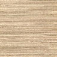 Winfield Thybony for Kravet: Sisal WSS4513.WT.0 Latte