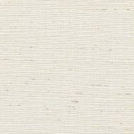 Winfield Thybony for Kravet: Sisal WSS4518.WT.0 Cotton