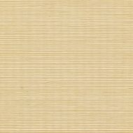 Winfield Thybony for Kravet: Sisal WSS4519.WT.0 Custard